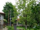 Бистришки манастир - Жилищните сгради