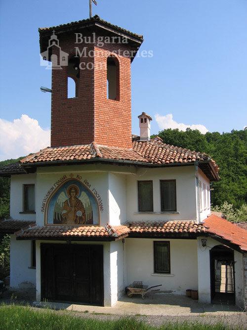 Чекотински манастир - Църквата (Снимка 6 от 17)