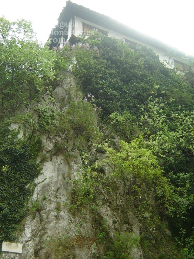 Черепишки манастир (Снимка 22 от 29)