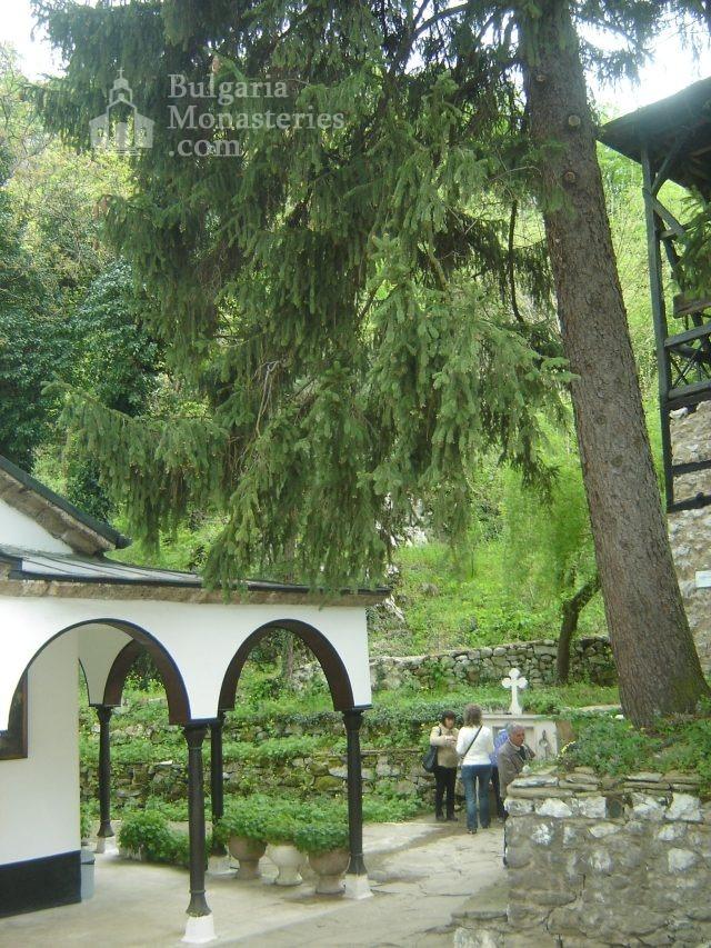 Черепишки манастир (Снимка 24 от 29)