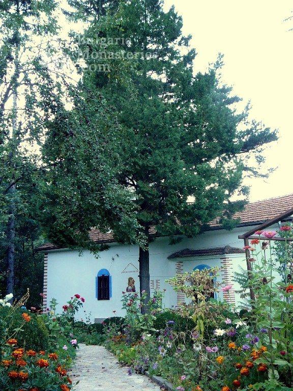 Дивотински манастир (Снимка 7 от 16)