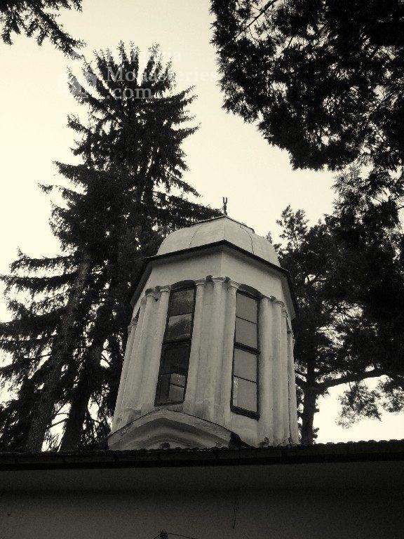 Дивотински манастир - Куполът на църквата (Снимка 8 от 16)