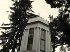 Дивотински манастир - Куполът на църквата