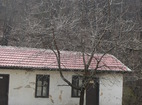 Дивотински манастир - Манастирските сгради