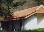 Елешнишки манастир - Стенопис