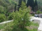Германски манастир