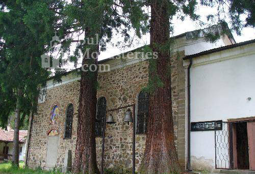 Германски манастир - Двете секвои пред църквата (Снимка 5 от 46)