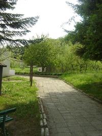 Каранвърбовски манастир - Църквата