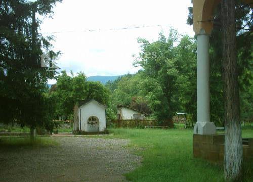 Лопушански манастир - Манастирският двор (Снимка 8 от 23)