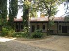 Мъглижки манастир - Комплексът от вътре