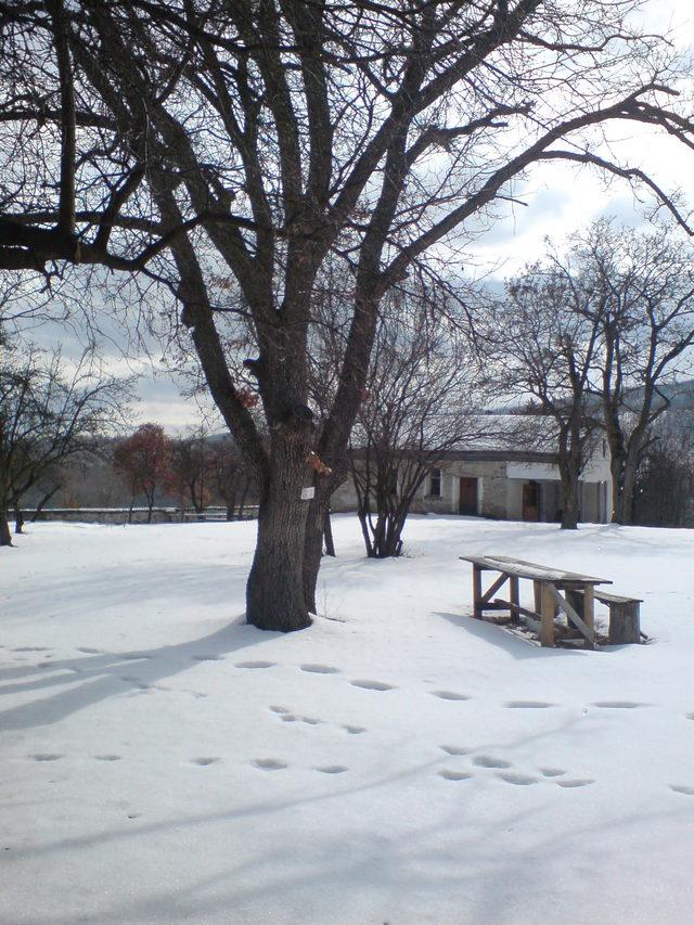Очушки манастир (Снимка 4 от 4)