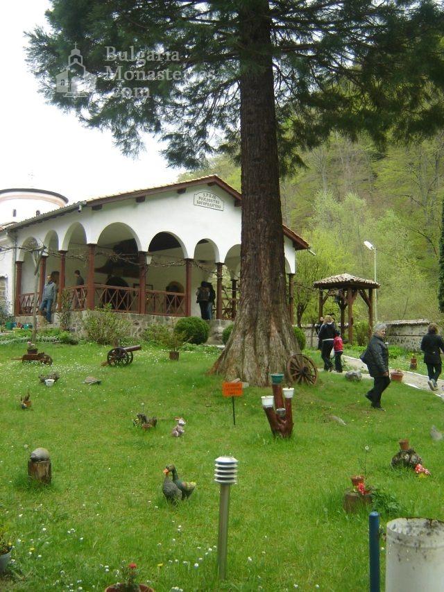 Осеновлашки манастир - Църквата  (Снимка 13 от 27)