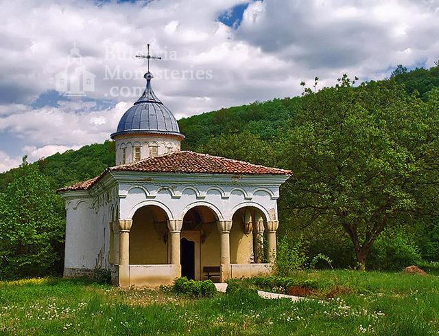 Плаковски манастир - Църквата (Снимка 3 от 12)