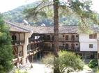 Троянски манастир - Деорът
