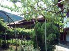 Kilifarevo Monastery - The monastery courtyard