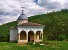 Plakovski Monastery - The minster