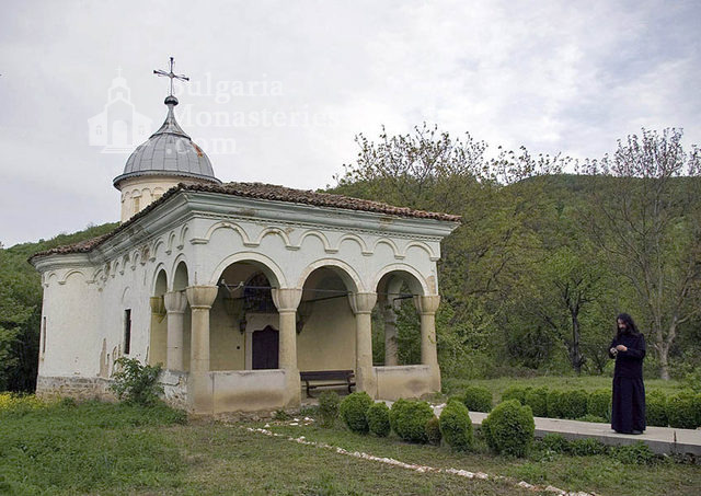Plakovski Monastery - The minster (Picture 4 of 12)