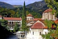 Бачковски манастир  - Коплексът