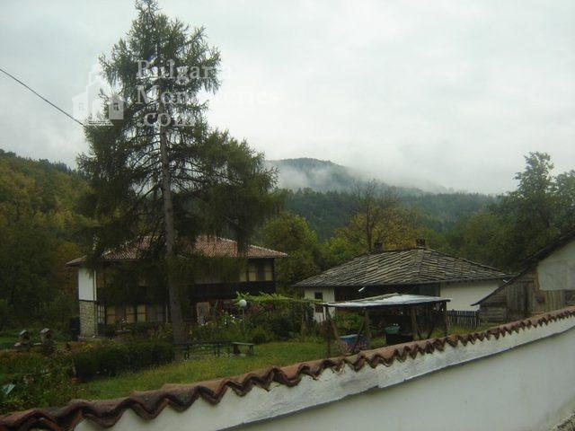 Батошевски манастир (Снимка 8 от 8)