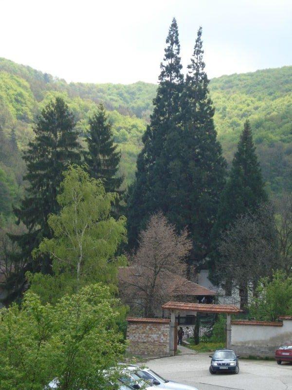 Германски манастир (Снимка 15 от 46)