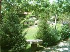 Килифаревски манастир  - Манастирският двор