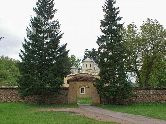 Лопушански манастир (Снимка 5 от 23)
