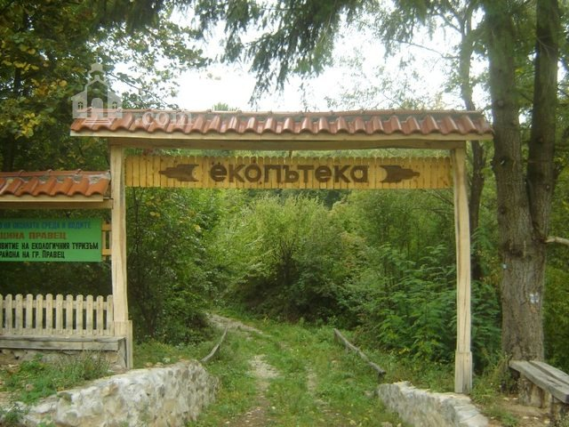 Правешки манастир - Начало на екопътеката (Снимка 13 от 21)