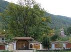Врачешки манастир - Комплексът от вън