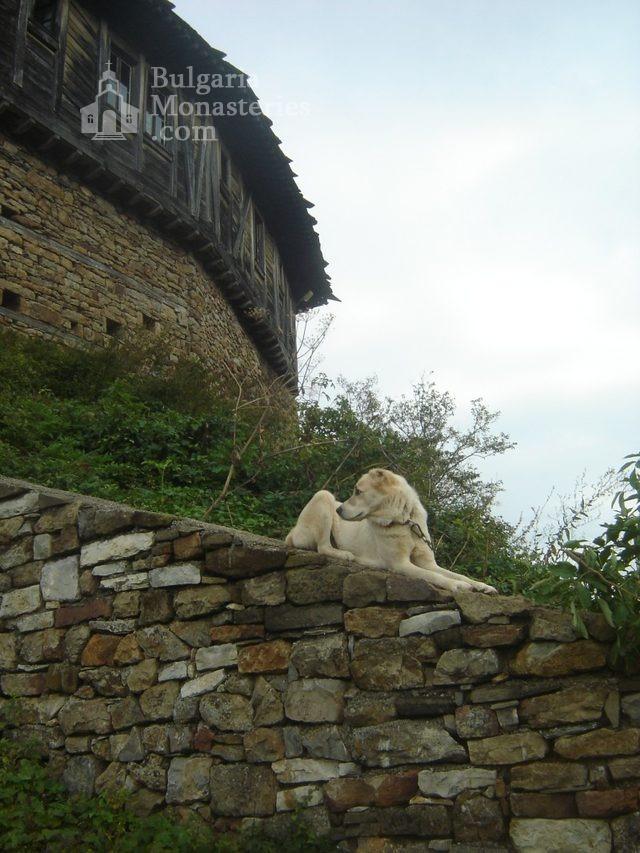 Glozhene Monastery (Picture 22 of 33)