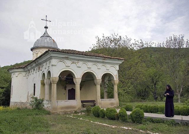 Plakovski Monastery - The minster (Picture 4 of 12)